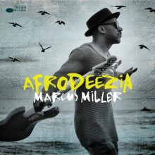 MarcusMiller