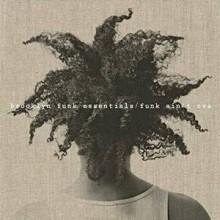 brooklyn funk essentials_funk aint over