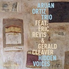 aruan ortiz trio_hidden voices